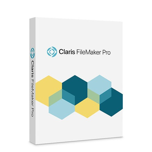 FileMaker Pro 19 Ita Upg ESD Win Mac